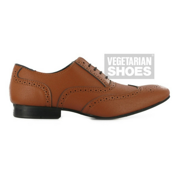 vegetarian_shoes_zapatos_veganos.jpg